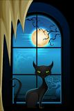 Gato negro en la noche de Halloween Fotografía de archivo libre de regalías