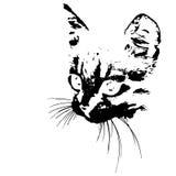 Gato negro en un fondo blanco, versión de la trama Foto de archivo