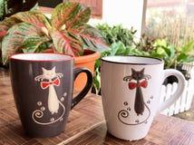 Gato negro y gato blanco imagen de archivo libre de regalías