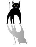 Gato negro y su sombra. Imagen de archivo libre de regalías