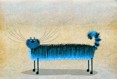 Gato patilludo largo azul Imagen de archivo libre de regalías