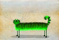 Gato patilludo largo verde Fotos de archivo