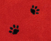 Gato Pawprints en tela Fotografía de archivo