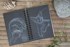Gato pelo giz branco no papel preto Bloco de notas de papel preto no fundo de madeira Foto de Stock