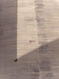Gato perezoso en el borde de la cortina foto de archivo