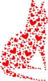 Gato por completo de corazones Foto de archivo libre de regalías