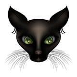 Gato preto de cabelos curtos de deidade egípcia com olhos verdes Foto de Stock Royalty Free