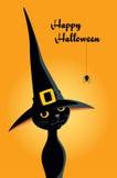 Gato preto de Dia das Bruxas em um chapéu da bruxa Fotos de Stock