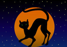 Gato preto de Halloween Foto de Stock Royalty Free