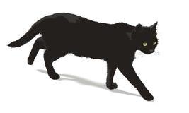 Gato preto de passeio Imagens de Stock