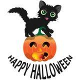 Gato preto e abóbora para Dia das Bruxas com um ` feliz de Dia das Bruxas do ` da inscrição Foto de Stock