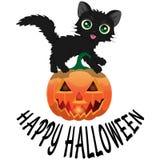 Gato preto e abóbora para Dia das Bruxas com um ` feliz de Dia das Bruxas do ` da inscrição Foto de Stock Royalty Free