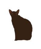 Gato preto em um fundo branco Ilustração Fotografia de Stock Royalty Free