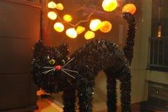 Gato preto na noite Fotos de Stock