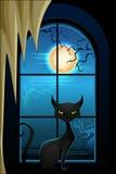 Gato preto na noite de Dia das Bruxas Fotografia de Stock Royalty Free