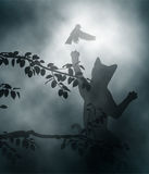 Gato que ambushing aves canoras Imagens de Stock