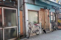 Gato que espera na casa da porta | Curso no Tóquio Japão o 30 de março de 2017 Imagens de Stock