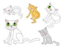Gato que faz coisas semelhantes aos felinos Foto de Stock Royalty Free