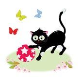 Gato que juega con una bola Imagen de archivo libre de regalías