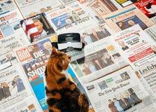 Gato que lee los periódicos importantes sobre la inauguración de Trum Fotografía de archivo