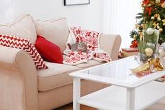 Gato que miente en el sofá en el sitio adornado para la Navidad Fotos de archivo libres de regalías