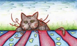 Gato que mira a escondidas sobre el horizonte Imágenes de archivo libres de regalías