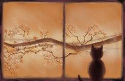 Gato que mira hacia fuera la ventana Fotos de archivo