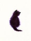 Gato que se sienta Fotos de archivo libres de regalías