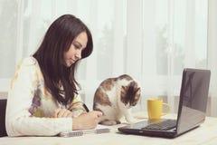 Gato que se sienta cerca de la muchacha Imagen de archivo