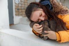 Gato recto escocés para un paseo en el invierno Fotos de archivo