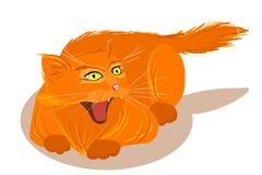 Gato rojo enojado del vector aislado Imagen de archivo libre de regalías