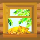 Gato rojo que duerme en el windowsill Fotografía de archivo