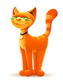 Gato rojo sonriente Imagen de archivo