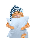 Gato soñoliento en un casquillo con una almohada imagenes de archivo
