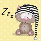 Gato sonolento Imagem de Stock Royalty Free