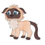 Gato tailandés triste stock de ilustración