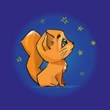 Gato vermelho bonito que olha o céu noturno e as estrelas Fotografia de Stock Royalty Free