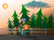 Gato vermelho que monta uma bicicleta motorizada retro ilustração do vetor