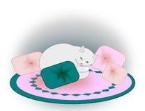Gato y almohadas Fotografía de archivo
