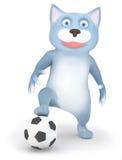 Gato y balón de fútbol Foto de archivo libre de regalías