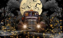 Gato y calabaza de la bruja de Halloween Imágenes de archivo libres de regalías