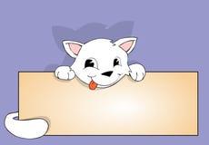 Gato y cartel Fotos de archivo libres de regalías
