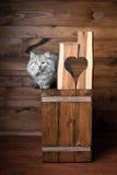 Gato y corazón grises Fotografía de archivo libre de regalías