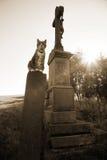 Gato y cruz Foto de archivo libre de regalías