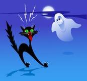 Gato y fantasma Fotografía de archivo libre de regalías
