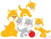 Gato y gatitos Imágenes de archivo libres de regalías