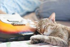 Gato y guitarra del sueño Foto de archivo