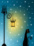 Gato y linterna vieja Imagen de archivo libre de regalías