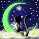 Gato y luna Foto de archivo libre de regalías