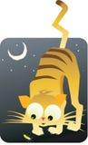 Gato y luna Fotografía de archivo libre de regalías